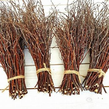 200 pcs. 100% Natural Birch Twigs for centerpieces, for