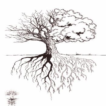 The tree is not completely full because it represents the other branches -  The tree is not complet